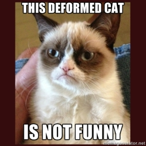 This deformed cat is not funny