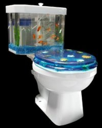 toilet-fish-tank